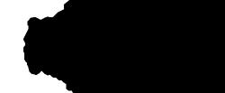 Benzo Schoonmaakorganisatie Logo